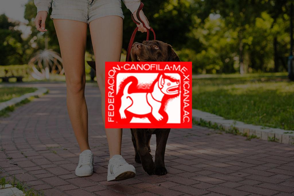 canofila
